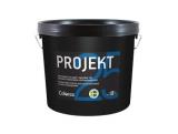 Projekt 25 AQ (Полуматовая профессиональная краска для помещений с повышенной влажностью. Содержит противоплесневой компонент)